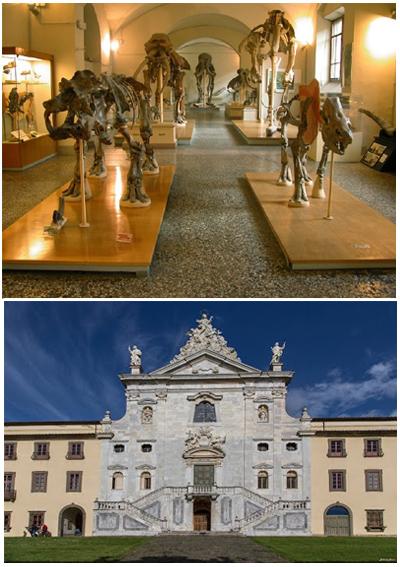 Certosa di Calci - Pisa